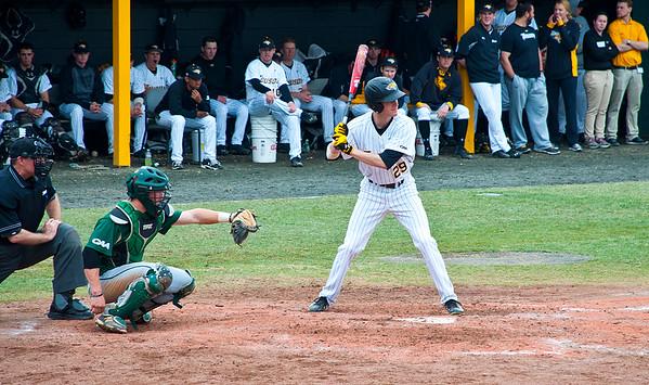 Towson Baseball